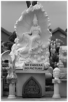 Stone carvings with No Camera No picture sign. Vietnam (black and white)