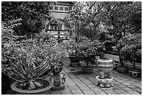 Tran Hung Dao temple gardens. Ho Chi Minh City, Vietnam (black and white)
