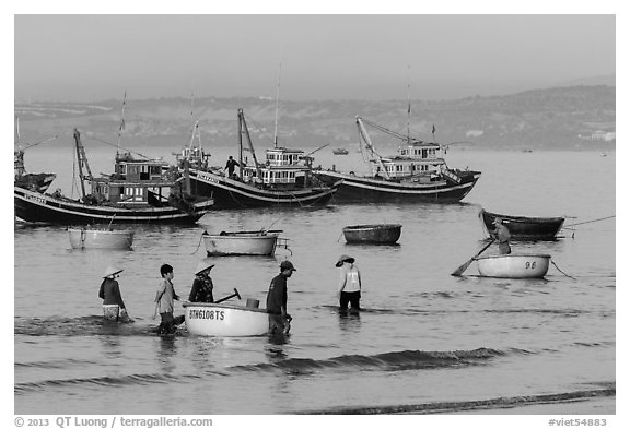 Fishermen use coracle boats to bring back catch from fishing boats. Mui Ne, Vietnam (black and white)