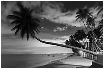 Beachfront resort at night. Mui Ne, Vietnam (black and white)