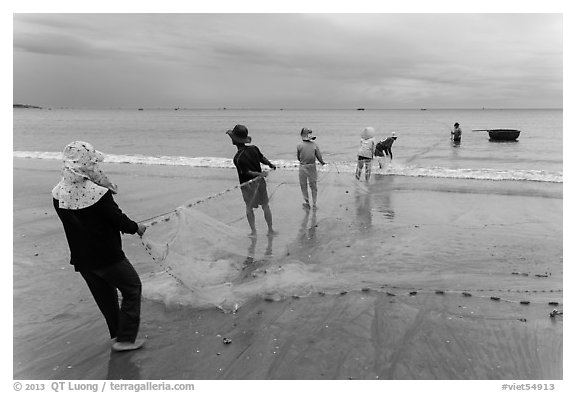 Fishermen lining up to pull net onto beach. Mui Ne, Vietnam (black and white)