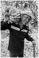 Man shouldering banana cluster. Ben Tre, Vietnam (black and white)