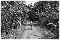 Woman bicycling on narrow road surrounded by banana trees. Ben Tre, Vietnam (black and white)
