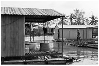 Man and dog walking across houseboats. My Tho, Vietnam ( black and white)
