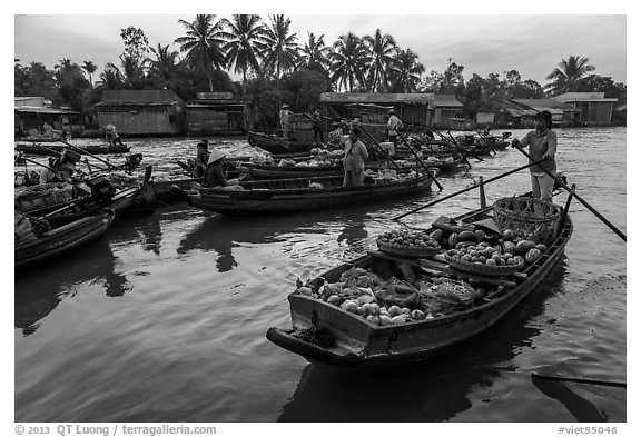 Woman paddles boat loaded with produce, Phung Diem floating market. Can Tho, Vietnam (black and white)
