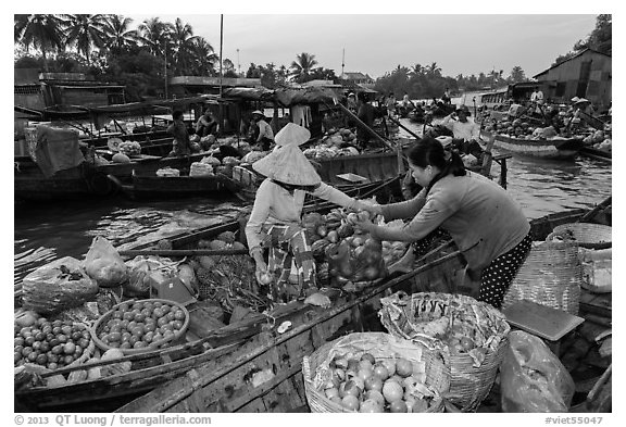 Fruit being sold from boat to boat, Phung Diem floating market. Can Tho, Vietnam (black and white)