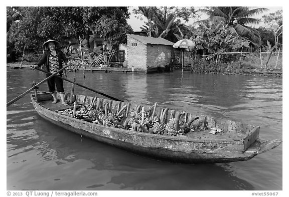 Woman paddling sampan loaded with bananas. Can Tho, Vietnam (black and white)
