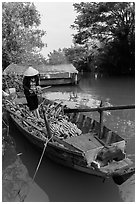 Woman unloading bananas from boat. Can Tho, Vietnam ( black and white)