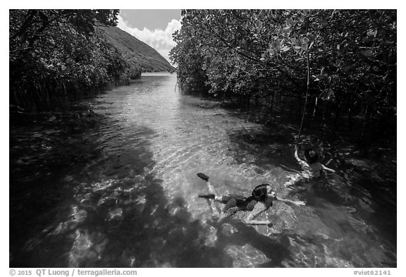 Children swim in mangrove forest, Bay Canh Island, Con Dao National Park. Con Dao Islands, Vietnam (black and white)