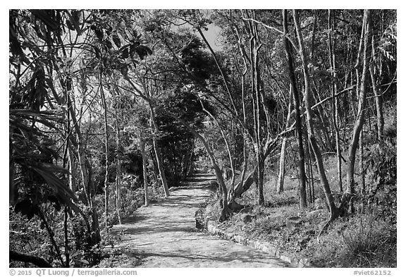 Trail, Bay Canh Island, Con Dao National Park. Con Dao Islands, Vietnam (black and white)