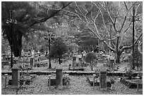 Graves, Hang Duong Cemetery. Con Dao Islands, Vietnam ( black and white)