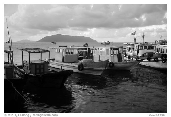 Fishing boats, early morning, Con Son harbor. Con Dao Islands, Vietnam (black and white)