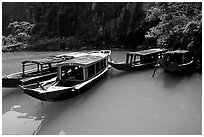 Tour boats near the entrance of Phong Nha Cave. Vietnam ( black and white)