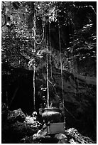 Urn and lianas near the entrance of upper cave, Phong Nha Cave. Vietnam (black and white)