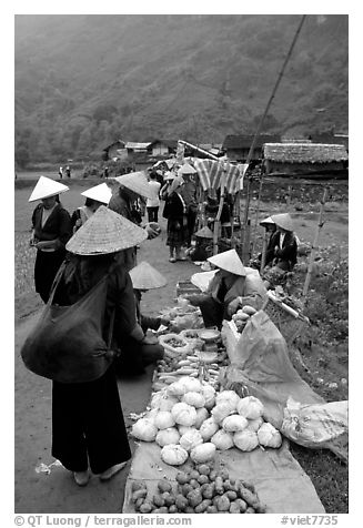 Vegetables for sale at an outdoor market near Ba Be Lake. Northeast Vietnam (black and white)