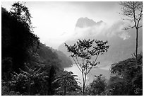 Ba Be Lake with morning mist. Northeast Vietnam ( black and white)