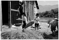 Thai women repair a house, Tuan Giao. Northwest Vietnam ( black and white)