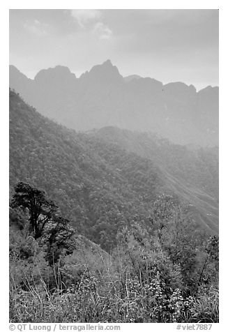 Forests and peaks in the Tram Ton Pass area. Sapa, Vietnam
