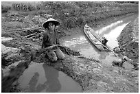 Mechanized irrigation. Mekong Delta, Vietnam ( black and white)