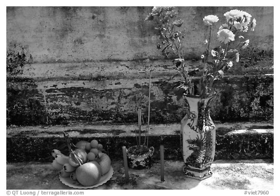Flowers, fruit, and incense offered on a grave. Ben Tre, Vietnam (black and white)