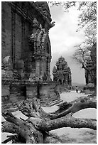 Among the Cham towers of Po Klong Garai. Vietnam (black and white)