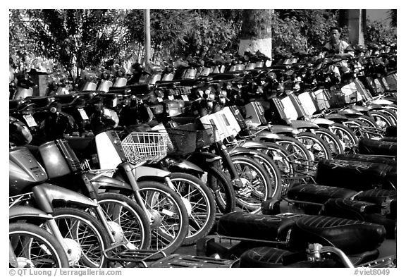 With that many motorcycles, valet parking is necessary. Ho Chi Minh City, Vietnam (black and white)