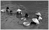 Collecting clams, near Long Xuyen. Mekong Delta, Vietnam ( black and white)
