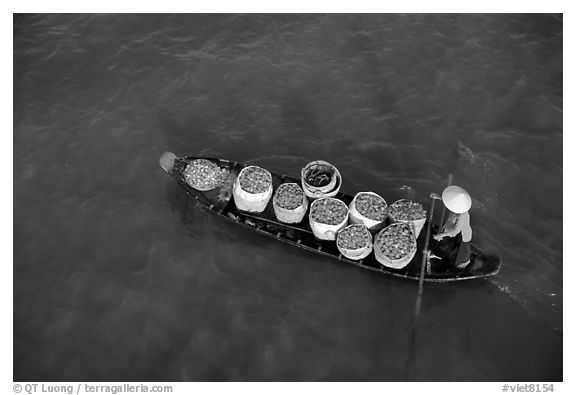 Transporting fruit on a small boat. Can Tho, Vietnam (black and white)