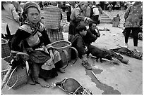 Pigs ready to be carried away for sale, sunday market. Bac Ha, Vietnam ( black and white)