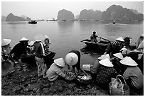 Fresh catch. Halong Bay, Vietnam ( black and white)