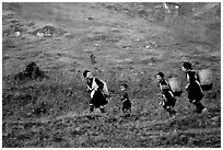 Hmong women back from the fields. The back basket is typically used by mountain tribes. Sapa, Vietnam (black and white)