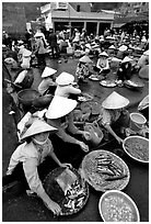 Fish market, Hong Gai. Halong Bay, Vietnam ( black and white)