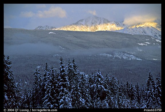 Snowy peaks hit by a ray of sun after a winter storm. Banff National Park, Canadian Rockies, Alberta, Canada (color)