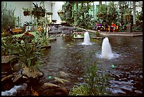 Indoor pond and garden. Calgary, Alberta, Canada ( color)