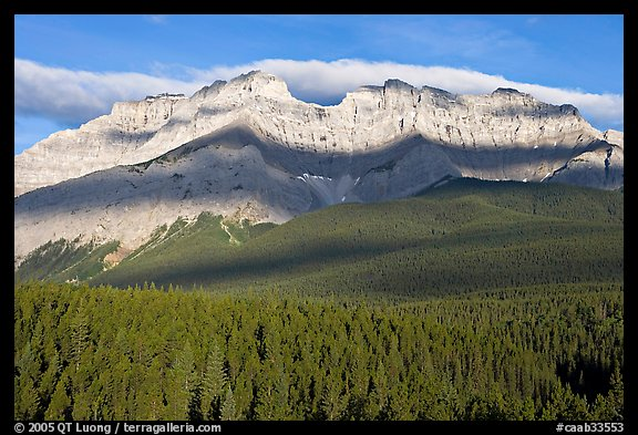 Conifer forest and limestone peaks near Lake Minnewanka, morning. Banff National Park, Canadian Rockies, Alberta, Canada (color)