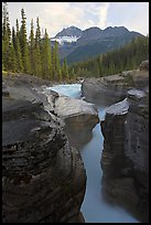 Mount Sarbach and Mistaya Canyon. Banff National Park, Canadian Rockies, Alberta, Canada ( color)
