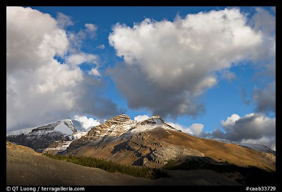 Peak and cloud near the Columbia Icefield,  early morning. Jasper National Park, Canadian Rockies, Alberta, Canada (color)