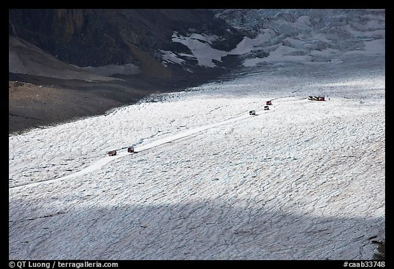Distant view of snowcoaches transporting tourists on the Athabasca Glacier. Jasper National Park, Canadian Rockies, Alberta, Canada (color)