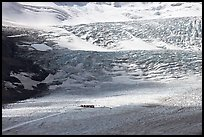 Distant view of snowcoaches parked at the base of the lower icefall on the Athabasca Glacier. Jasper National Park, Canadian Rockies, Alberta, Canada ( color)