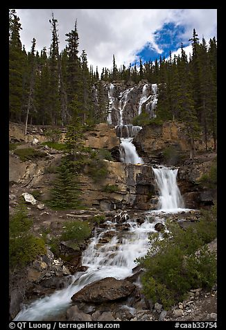 Multi-tiered Tangle Falls. Jasper National Park, Canadian Rockies, Alberta, Canada (color)