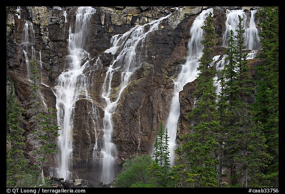 Tangle Falls and trees. Jasper National Park, Canadian Rockies, Alberta, Canada (color)