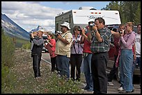 Tourists lined up on Icefields Parkway to photograph wildlife. Jasper National Park, Canadian Rockies, Alberta, Canada