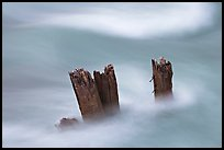 Stumps in the Whirlpool River. Jasper National Park, Canadian Rockies, Alberta, Canada ( color)