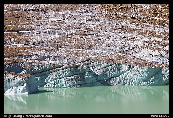 Cavell Glacier calving into a glacial lake. Jasper National Park, Canadian Rockies, Alberta, Canada (color)