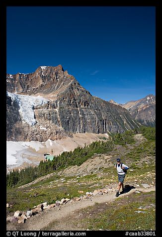 Hiker on a trail below Angel Glacier. Jasper National Park, Canadian Rockies, Alberta, Canada (color)