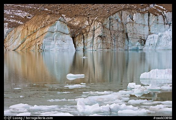 Front of Cavell Glacier reflected in glacial lake. Jasper National Park, Canadian Rockies, Alberta, Canada (color)