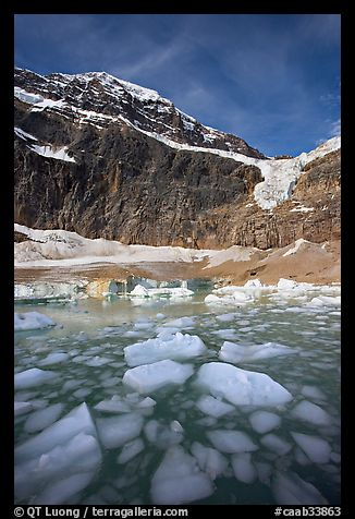 Iceberg-filled  Glacial Pond, and steep face of Mt Edith Cavell, early morning. Jasper National Park, Canadian Rockies, Alberta, Canada (color)