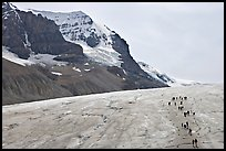 Toe of Athabasca Glacier with tourists in delimited area. Jasper National Park, Canadian Rockies, Alberta, Canada