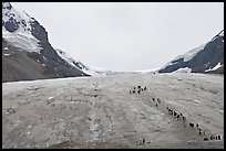 Toe of Athabasca Glacier with tourists in delimited area. Jasper National Park, Canadian Rockies, Alberta, Canada ( color)