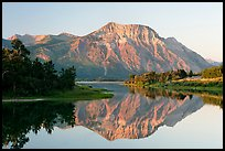 Vimy Peak reflected in Middle Waterton Lake, sunrise. Waterton Lakes National Park, Alberta, Canada ( color)
